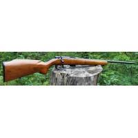 Remington Mod. 591M Cal. 5mm
